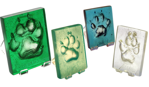 dog & cat pawprint glass plaques